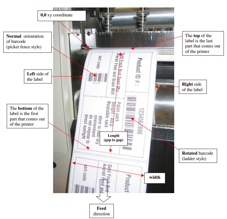 margini delle etichette nelle stampanti Zebra