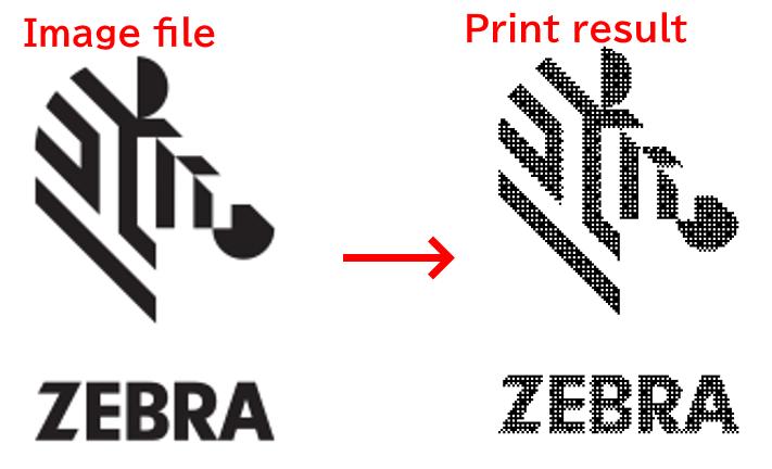 qualità di stampa zebradesigner